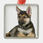 perro de perrito del perrito del pastor alemán adornos de navidad