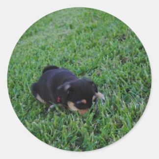 Perro de perrito etiquetas redondas