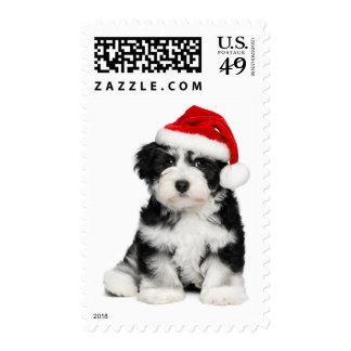 Perro de perrito lindo de Havanese del navidad 2 Envio