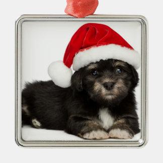Perro de perrito lindo de Havanese del navidad Adorno Navideño Cuadrado De Metal
