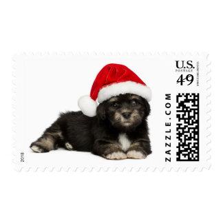 Perro de perrito lindo de Havanese del navidad Timbre Postal