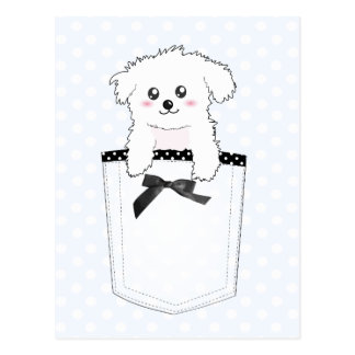 Perro de perrito lindo del bolsillo postal