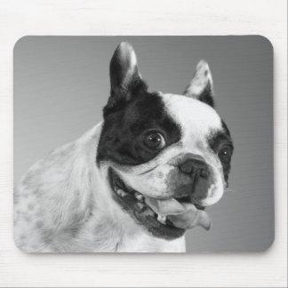 Perro de perrito lindo del dogo francés del amor mouse pads
