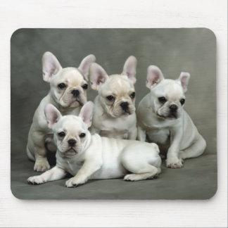 Perro de perrito lindo del dogo francés Mousepad