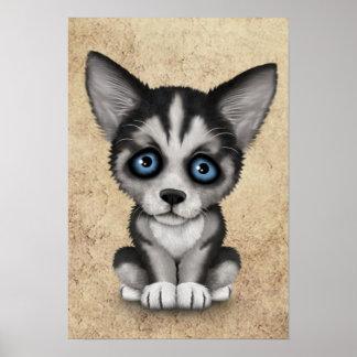 Perro de perrito lindo del husky siberiano en poster