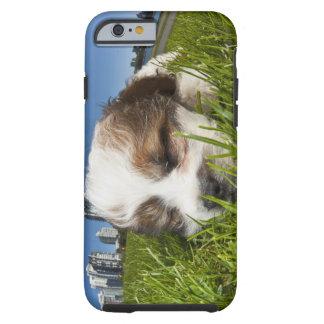 Perro de perrito lindo en el parque, Vancouver, Funda De iPhone 6 Tough