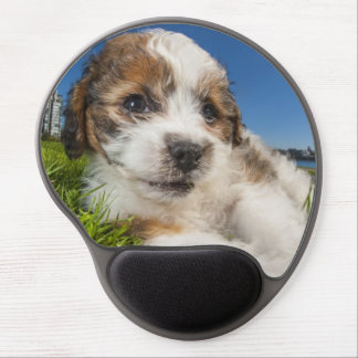 Perro de perrito lindo (Shitzu) Alfombrillas Con Gel