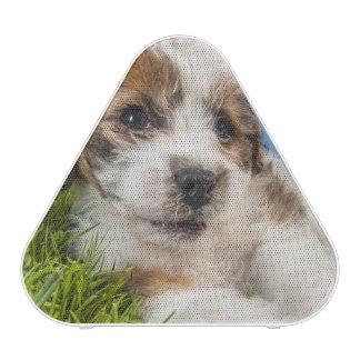 Perro de perrito lindo (Shitzu) Altavoz Bluetooth