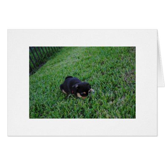 Perro de perrito tarjeta de felicitación