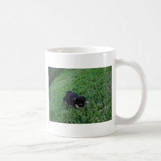 Perro de perrito taza