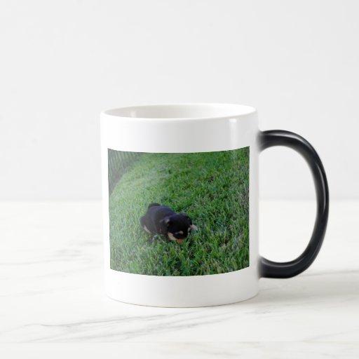 Perro de perrito taza mágica