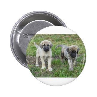 Perro de perritos de Anatolia del pastor Pin Redondo De 2 Pulgadas