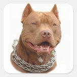 Perro de Pitbull Colcomanias Cuadradas