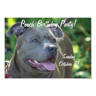 """Perro de Pitbull Invitación 3.5"""" X 5"""""""