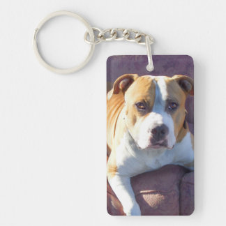 Perro de Pitbull Llavero Rectangular Acrílico A Una Cara