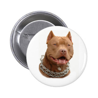 Perro de Pitbull Pins