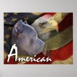 Perro de Pitbull Terrier del americano, bandera, E Posters