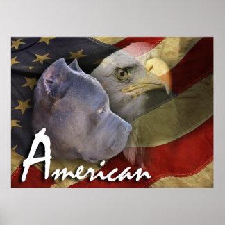 Perro de Pitbull Terrier del americano, bandera, E Póster