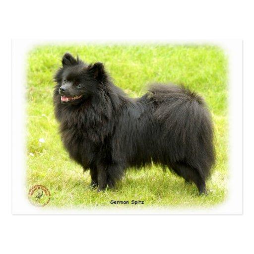 Perro de Pomerania alemán 9W014D-009 Postales
