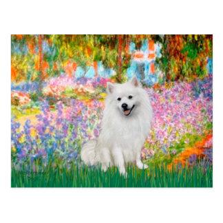 Perro de Pomerania esquimal 1 - jardín Tarjetas Postales