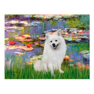 Perro de Pomerania esquimal 1 - lirios 2 Tarjeta Postal