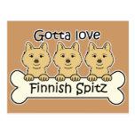 Perro de Pomerania finlandés tres Postales