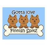 Perro de Pomerania finlandés tres Tarjetas Postales