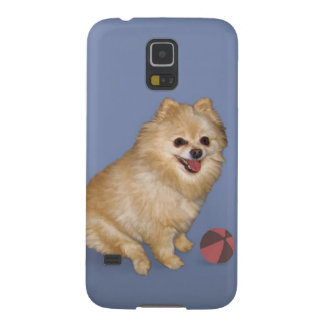 Perro de Pomeranian con la bola Fundas Para Galaxy S5