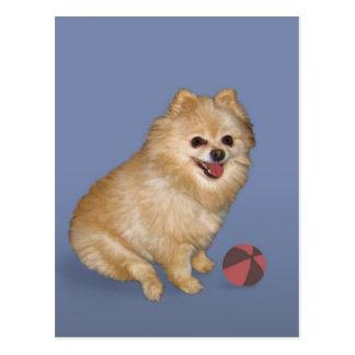 Perro de Pomeranian con la bola Tarjeta Postal