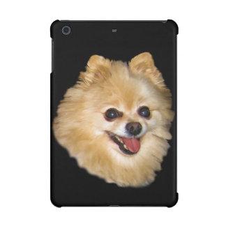 Perro de Pomeranian