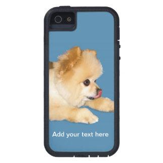 Perro de Pomeranian que pega la lengua hacia fuera iPhone 5 Case-Mate Cárcasas