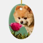 Perro de Pomeranian y ornamento color de rosa Ornamento Para Arbol De Navidad