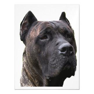 perro de pressa.png invitaciones magnéticas