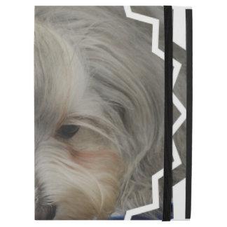 Perro de reclinación de Havanese