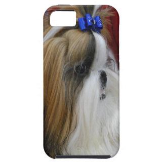 Perro de Shih Tzu iPhone 5 Protector