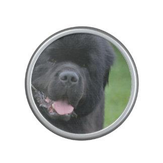 Perro de Terranova Altavoz Bluetooth