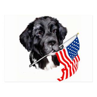 Perro de Terranova con la bandera Postal