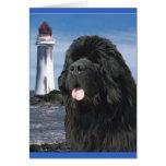 Perro de Terranova del puente del arco iris