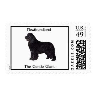 Perro de Terranova el gigante apacible Sellos