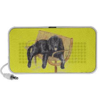 Perro de Terranova en banco, iPhone Altavoces