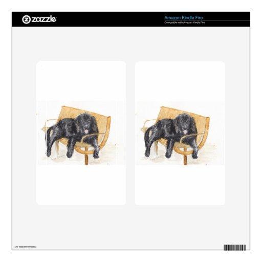 Perro de Terranova en banco, Pegatinas Skins Para Kindle Fire