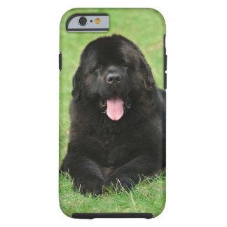 Perro de Terranova Funda De iPhone 6 Tough