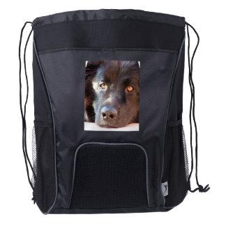 Perro de Terranova Mochila De Cordón