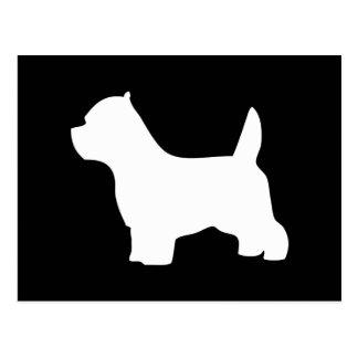 Perro de Terrier blanco de montaña del oeste, Tarjetas Postales