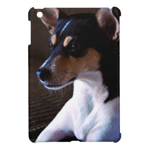 Perro de Terrier de rata iPad Mini Protectores