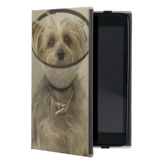 Perro de Terrier que lleva el cuello protector iPad Mini Protector