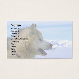 Perro de trineo esquimal canadiense tarjetas de visita