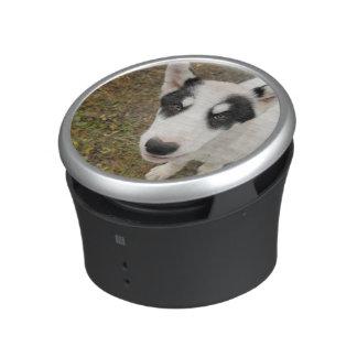 Perro de trineo groenlandés famoso, perrito blanco altavoz