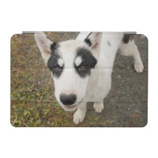 Perro de trineo groenlandés famoso, perrito blanco cubierta de iPad mini