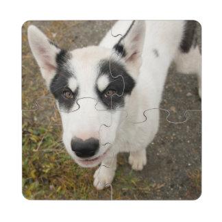 Perro de trineo groenlandés famoso, perrito blanco posavasos de puzzle